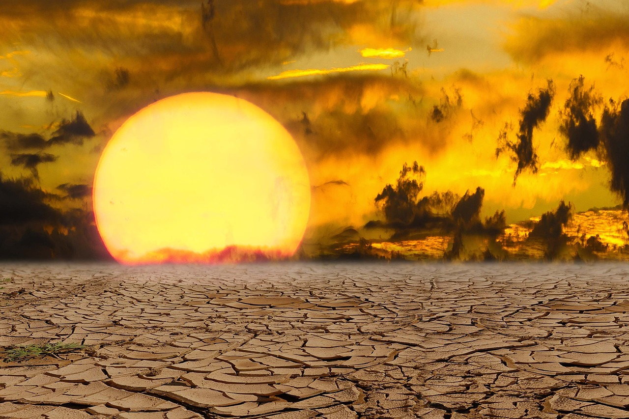 Deadly Heatwaves in India